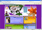 Health Naturals Inc company